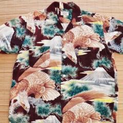 Penny's Eagle Mt. Fuji Shirt