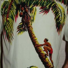 McGregor Coconut Climber Shirt