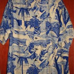 Linn's Hawaiian Photo Print Shirt